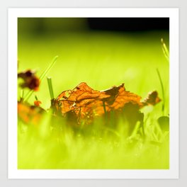 On Fire. Art Print