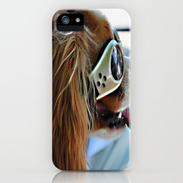 Cool Cavalier, Marblehead, MA iPhone Case