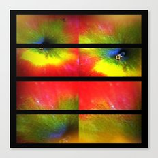 Flower apple explosion Canvas Print