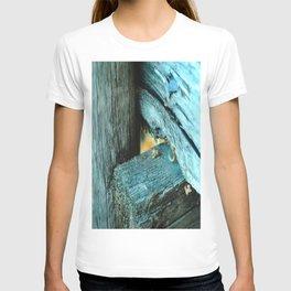 Wood Triangle T-shirt