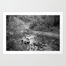 Waterfall Glen Art Print