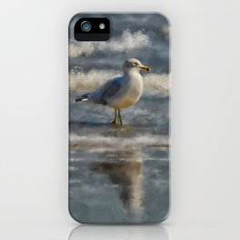 Seagull By The Seashore iPhone Case