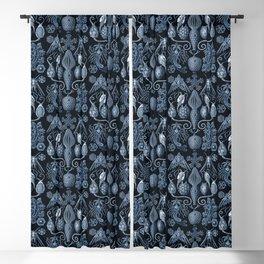 Ernst Haeckel Amphoridea Sea Life Blackout Curtain