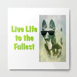 Cool Dog Living Life to the Fullest Metal Print