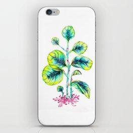 Peperomia iPhone Skin