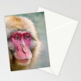 Snow Monkey Stationery Cards