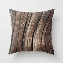 Smokey Lake Farm 1 Throw Pillow