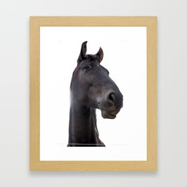 Black Horse Portrait Framed Art Print