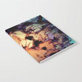 Destabilizing event Notebook
