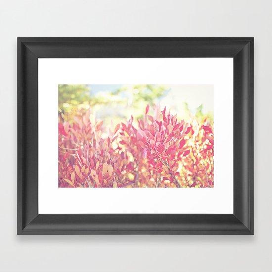 Burst of Red Framed Art Print