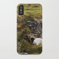 lamb iPhone & iPod Cases featuring Lamb by Aaron MacDougall