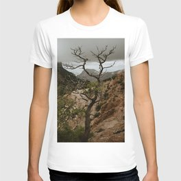 Colorful Mountaintop View with Withered Tree - Big Bend T-shirt