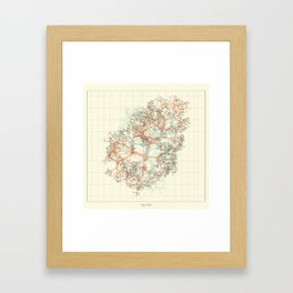 Arbor Ludi: Karpov Framed Art Print