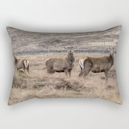 Family of wild red Scottish deer and stags Rectangular Pillow