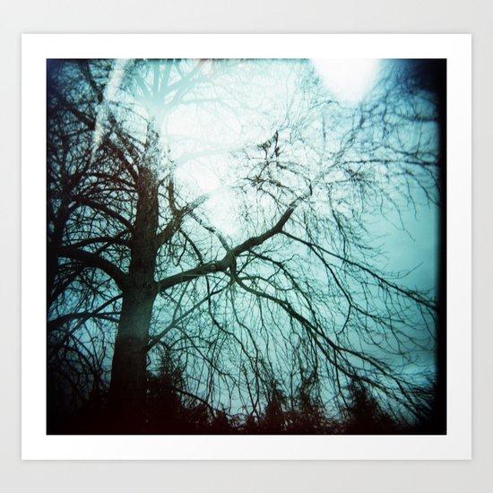 Winter Tree Holga Art Print