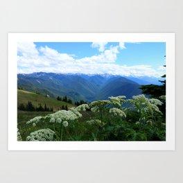 Olympic Mountains from Hurrican Ridge Art Print