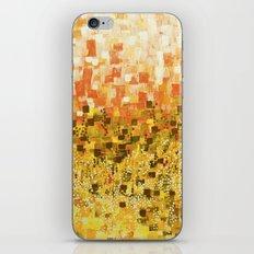 :: Sun Compote :: iPhone & iPod Skin