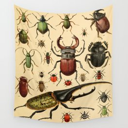 Popular History of Animals Beetles Vintage Scientific Illustration Educational Diagrams Wall Tapestry