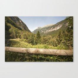 A mountain landscape Canvas Print
