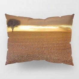 Ancient Oak Amid Ploughed Crop Field Italian sunset Pillow Sham