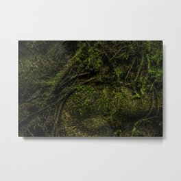Mossy Moss - Tree root full of thick moss Metal Print