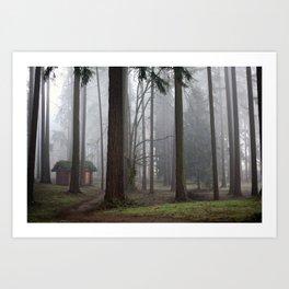 A foggy walk in the woods Art Print