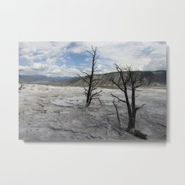 Mammoth Hot Spring  Terrace Metal Print