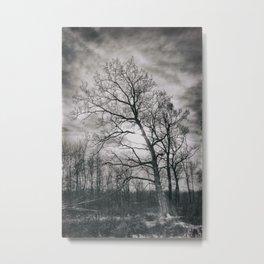 Haunted Tree Metal Print