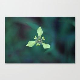 Triangle Flower Canvas Print