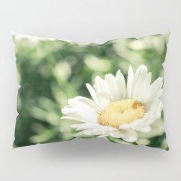 Wild Daisies in Lush Green Meadow Pillow Sham