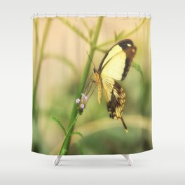 Exotic Butterfly natural beauty Shower Curtain