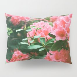 Pink Rhododendrons Pillow Sham
