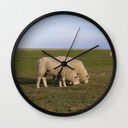 Grasende Schafe auf Nordseeinsel Pellworm / Grazing Sheep on green Field Wall Clock