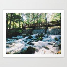 Spring Falls Art Print