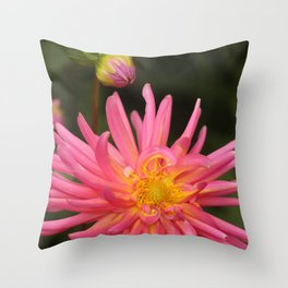 dahlia flower in the flower bed Throw Pillow