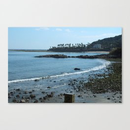 Coastal Drive Canvas Print