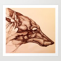 coyote Art Prints featuring Coyote  by jacobketcham