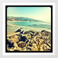 Birds at the beach. Art Print