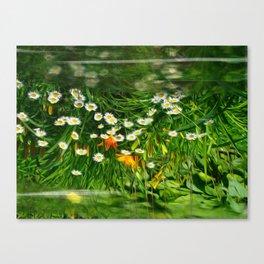Upside Down Daisies Canvas Print