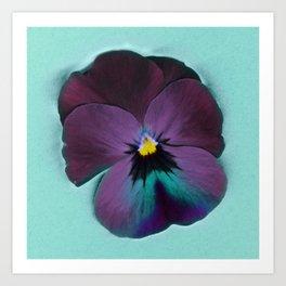 Purple viola tricolor Art Print