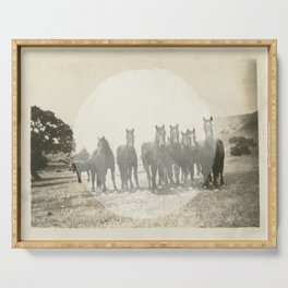 Band of Horses - White Serving Tray