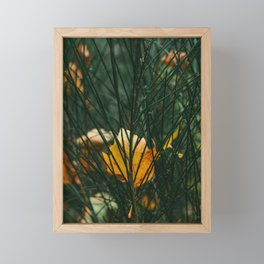 Autumn - yellow leaves - nature fineart photography Framed Mini Art Print