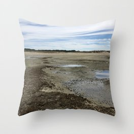 Wellfleet Salt Marsh Throw Pillow