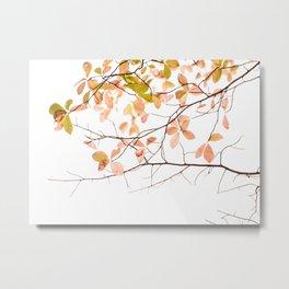 Autumn Lite Metal Print