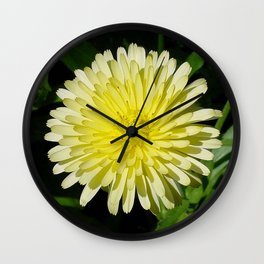 Pale Yellow Mary Bud Marigold With Garden Background  Wall Clock
