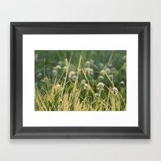Dusk in the Field Framed Art Print