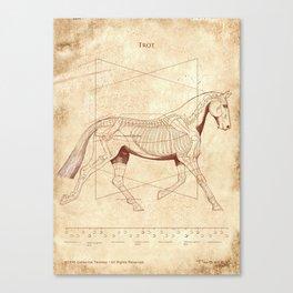 Da Vinci Horse: The Trot Revealed Canvas Print