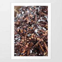 Copper cuttings Art Print