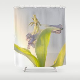 rage, rage against the dying of the light Shower Curtain
