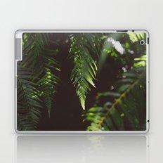 Ferns of Emerald Laptop & iPad Skin